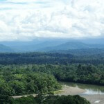 Brazilië Amazone