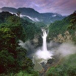 Amazone Brazilië