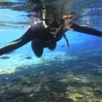 Bonito snorkelen