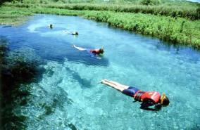 Bonito Brazilië snorkelen